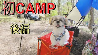 #camp #dog #Happy 初CAMP/生後約10ヵ月の子犬と1泊2日山中湖/かわいい子犬の成長記録 第7弾  後編