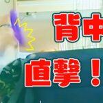 かわいいラブラドール・レトリーバー犬ノアと運動不足解消エクササイズ!